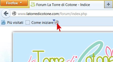 Novità su la Torre di Cotone: benvenuto Forum!